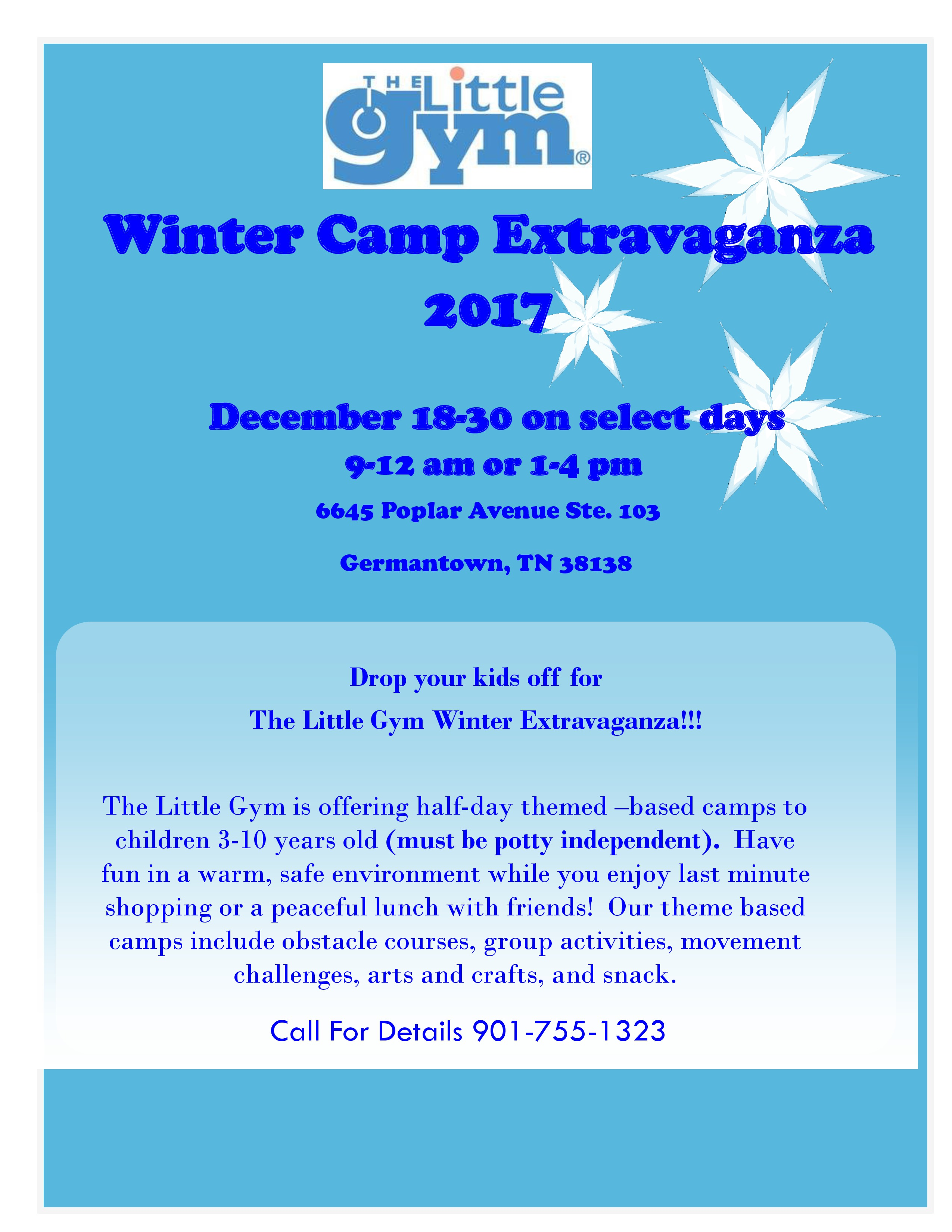 Sky Winter Camp